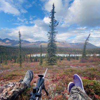 Denali Highway Caribou Hunt 2020