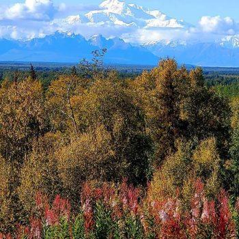 Colors of Denali