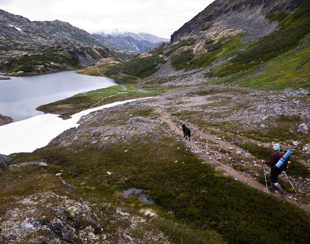 hiker and dog on the chilkoot trail