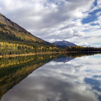 AlCan Reflection