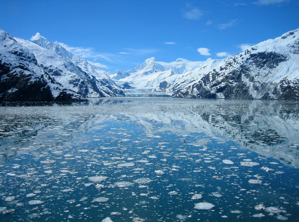 Ice chunks and glaciers in Glacier Bay National Park