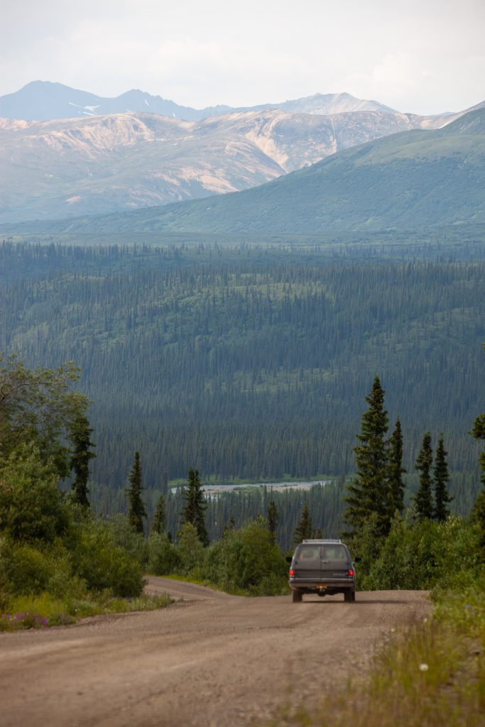 View of Nenana River from Denali Highway