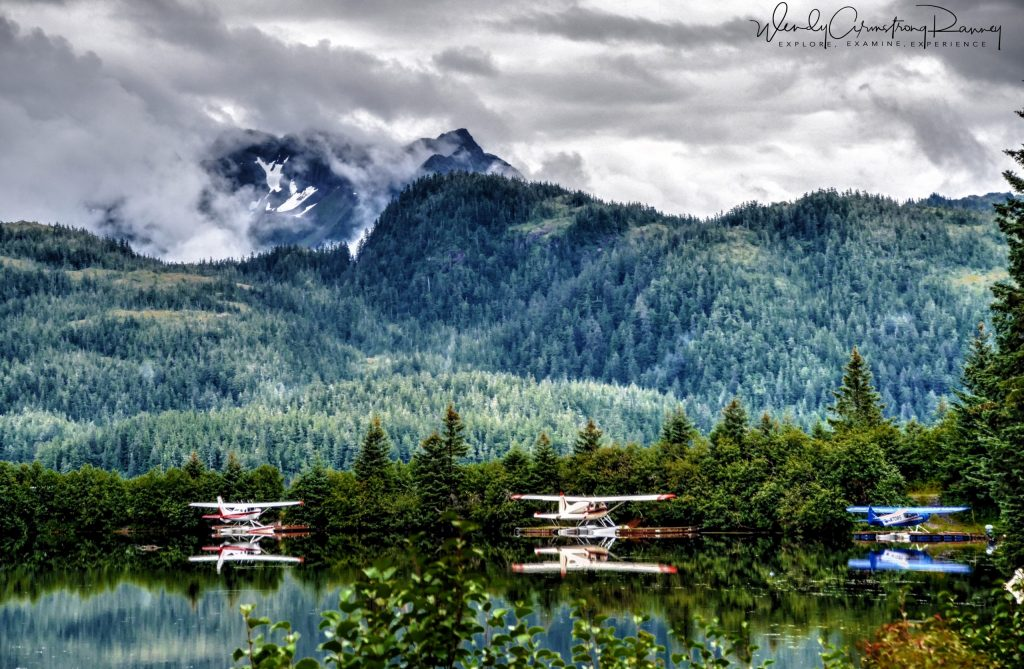 Three floatplanes moored on a lake with forest and mountain in the background